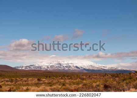 Mt Ngauruhoe New Zealand - stock photo