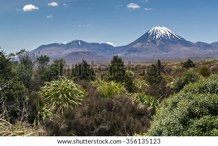 Mt Ngauruhoe volcano of North island New Zealand was used by Peter Jackson as a model for CGI as Mount Doom. Beautiful native vegetation at the flanks Mt Doom,  - stock photo