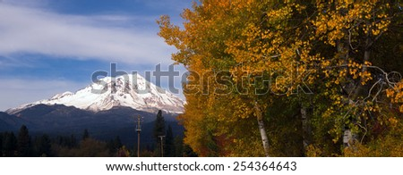 Mt Shasta Rural Fall Color California Nature Outdoor - stock photo
