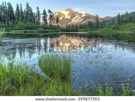 Mt. Shuksan reflected in Picture Lake surrounded by wildflowers from the Mt. baker Ski Area - stock photo