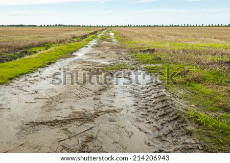 Muddy path with a tractor track in an agricultural landscape. - stock photo