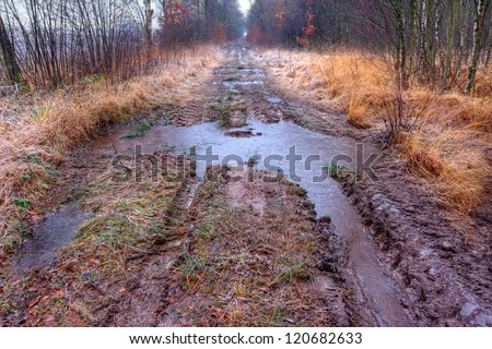 Muddy path with puddles - stock photo