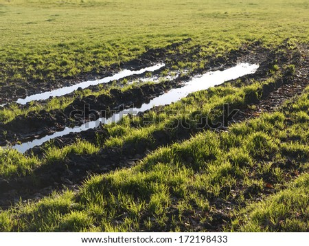 Muddy tire track on the grass way - stock photo