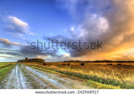 Muddy wet sand lane in grassland landscape at sunrise - stock photo