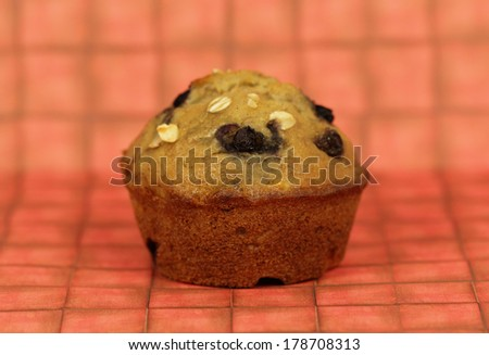 muffin  - stock photo