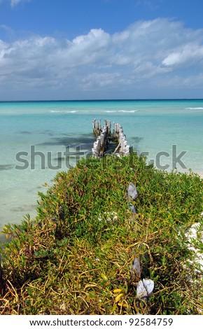 mujeres island - stock photo