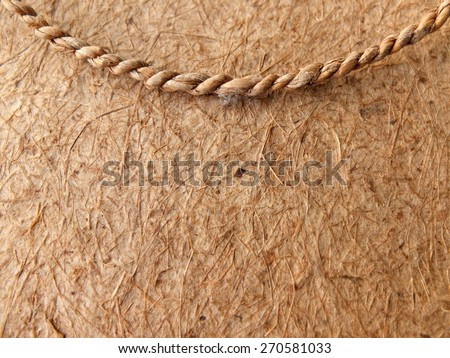 Mulberry paper and rope - stock photo