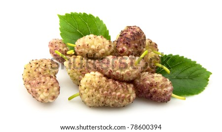 mulberry with leafs close up - stock photo