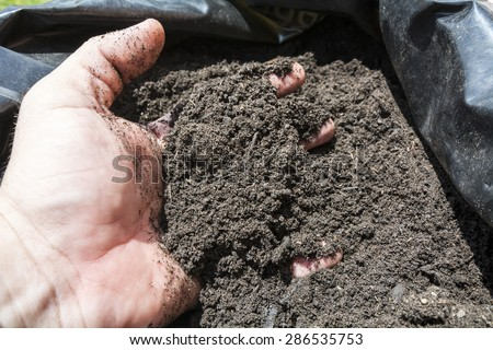 Mulch in a sack for the orchard, garden or field - stock photo