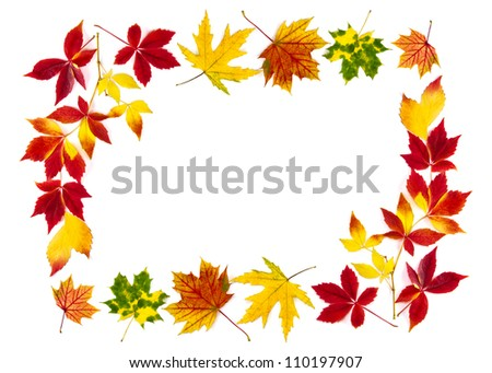 Multi-colored autumn leaves as a frame, with white copy space - stock photo