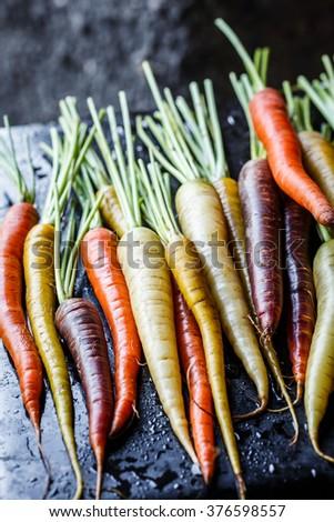 Multi-colored carrots - stock photo