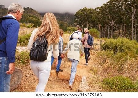 Multi-generation family walking through a forest, back view - stock photo