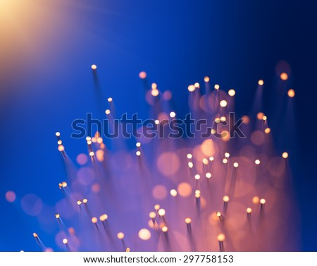 multicolor fiber optics - stock photo