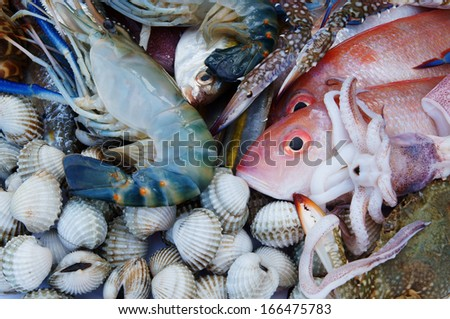 Multicolor fresh seafood background - stock photo