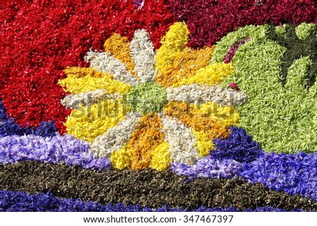 Multicolored floral carpet made with flower petals - stock photo