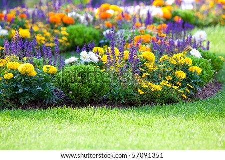multicolored flowerbed on a lawn. horizontal shot. small GRIP - stock photo
