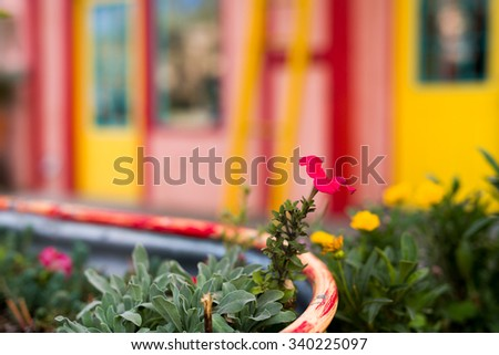 Multicolored storefront fronted by a flower display in Madrid, NM - stock photo