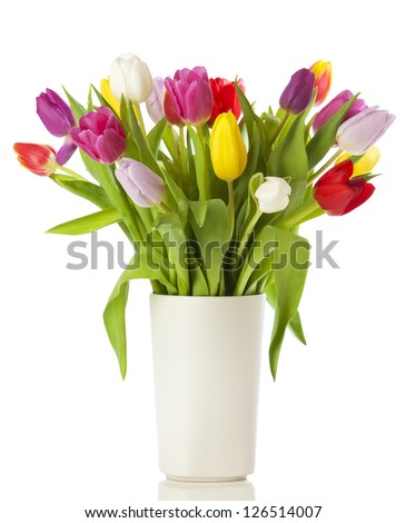 Multicolored tulips in a vase, isolated on white background - stock photo