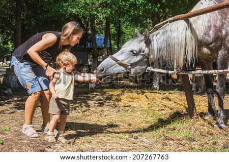 Mum with two-year child feed horse from hands - stock photo