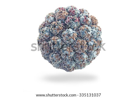 Murine Polyomavirus, have been extensively studied as tumor viruses leading to fundamental insights into carcinogenesis, DNA replication and protein processing in humans and animals (PDB1SID). - stock photo