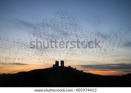 Murmuration of starlings over fairytale castle ruins in landscape - stock photo