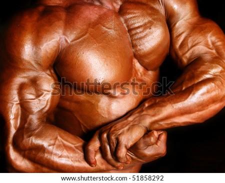 muscle body - stock photo
