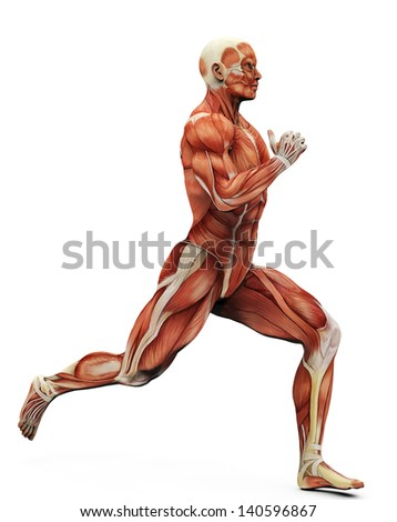 muscle man running - stock photo