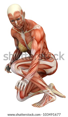 muscle woman crushed - stock photo
