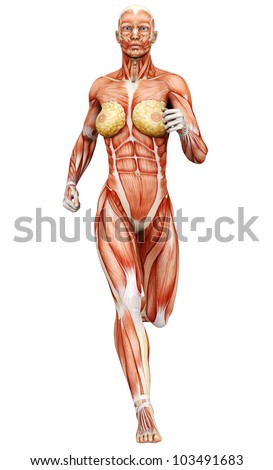 muscle woman running - stock photo
