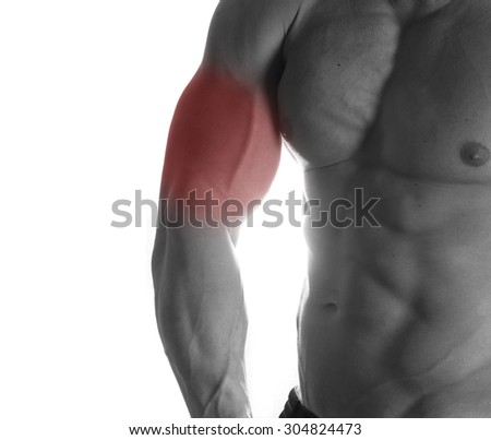 Muscular male torso with biceps selected on white background - stock photo