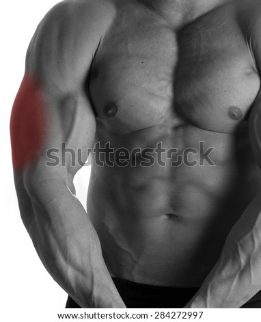 Muscular male torso with triceps selected on white background - stock photo