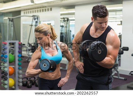 Muscular man and woman lifting dumbbells together at the gym - stock photo