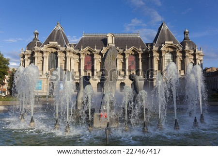 Museum of Fine Arts of Lille, Nord, Nord-Pas-de-Calais, France - stock photo