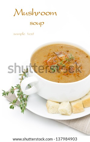 Mushroom cream soup with croutons and thyme isolated on a white background - stock photo