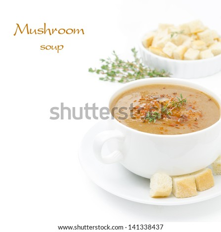 Mushroom cream soup with croutons and thyme isolated on white background and space for text - stock photo