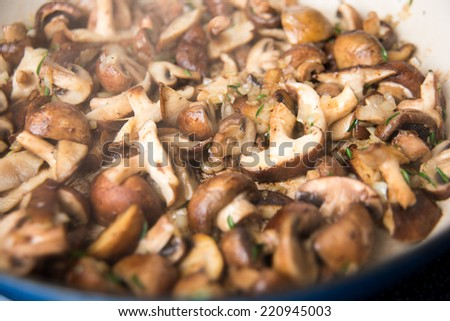 Mushroom Ragout with Fresh Herbs and Wine - stock photo