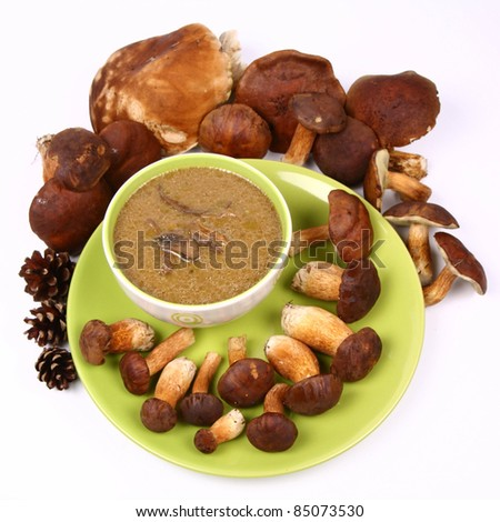 Mushroom soup in a bowl with some mushrooms around it and some pinecones - stock photo