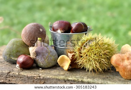 mushrooms and autumnal fruits on plank - stock photo