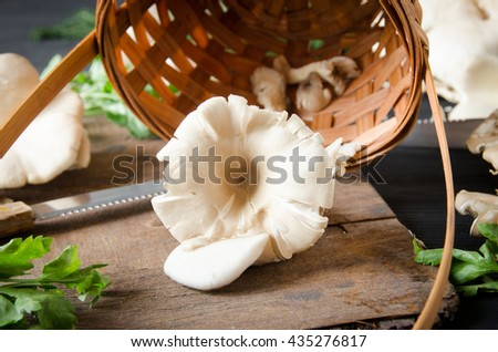 mushrooms black wooden table with herbs - stock photo