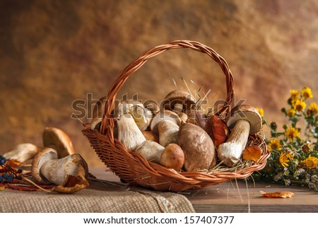Mushrooms still life / studio photography of wicker basket with edible mushrooms  - stock photo