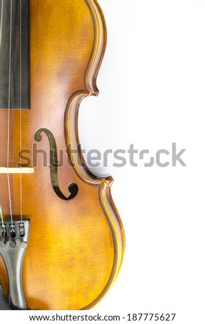 music string instrument violin isolated on white background - stock photo