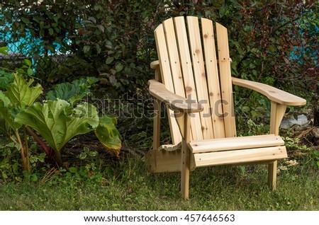 Muskoka chair and rhubarb - stock photo