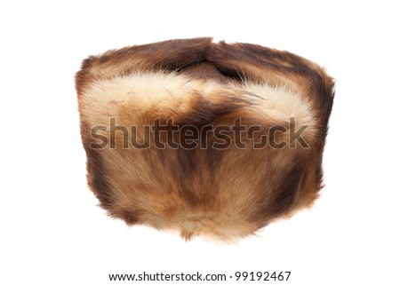 Muskrat fur hat on a white background - stock photo