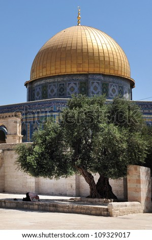 Muslim man prays under Dome of the Rock  Mosque on Temple Mount Jerusalem, Israel. - stock photo