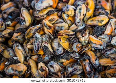 Mussel in the market,Food background - stock photo
