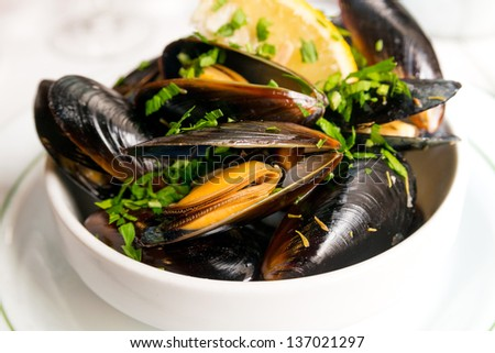 Mussel with white wine sauce on table - stock photo