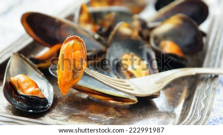 mussels in white wine with garlic - stock photo