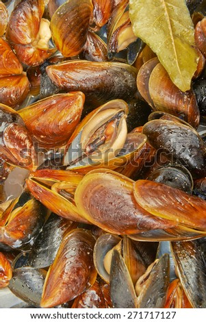 Mussels prepared in italian rustic style with wine and parsley - stock photo