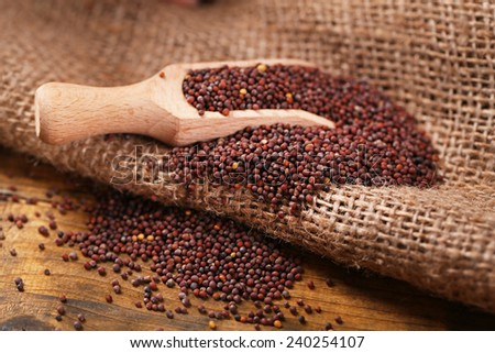 Mustard powder in wooden spoon on mustard seeds, on sackcloth background - stock photo