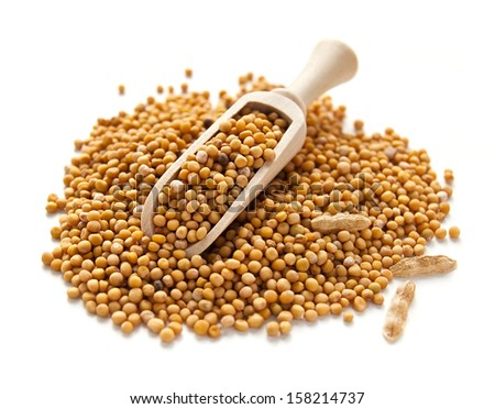Mustard seeds in wooden scoop spoon isolated on white background  - stock photo